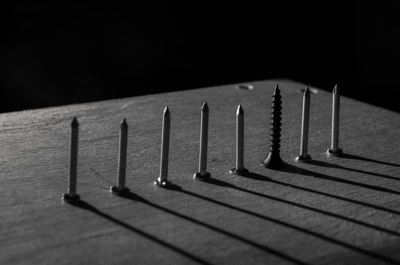 Different types of screws on display
