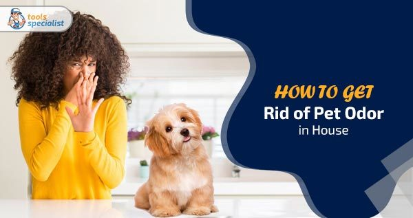 How to Get Rid of Pet Odor in The House