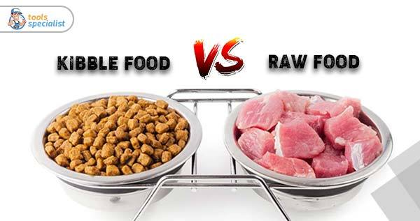Kibble vs Raw Dog Food