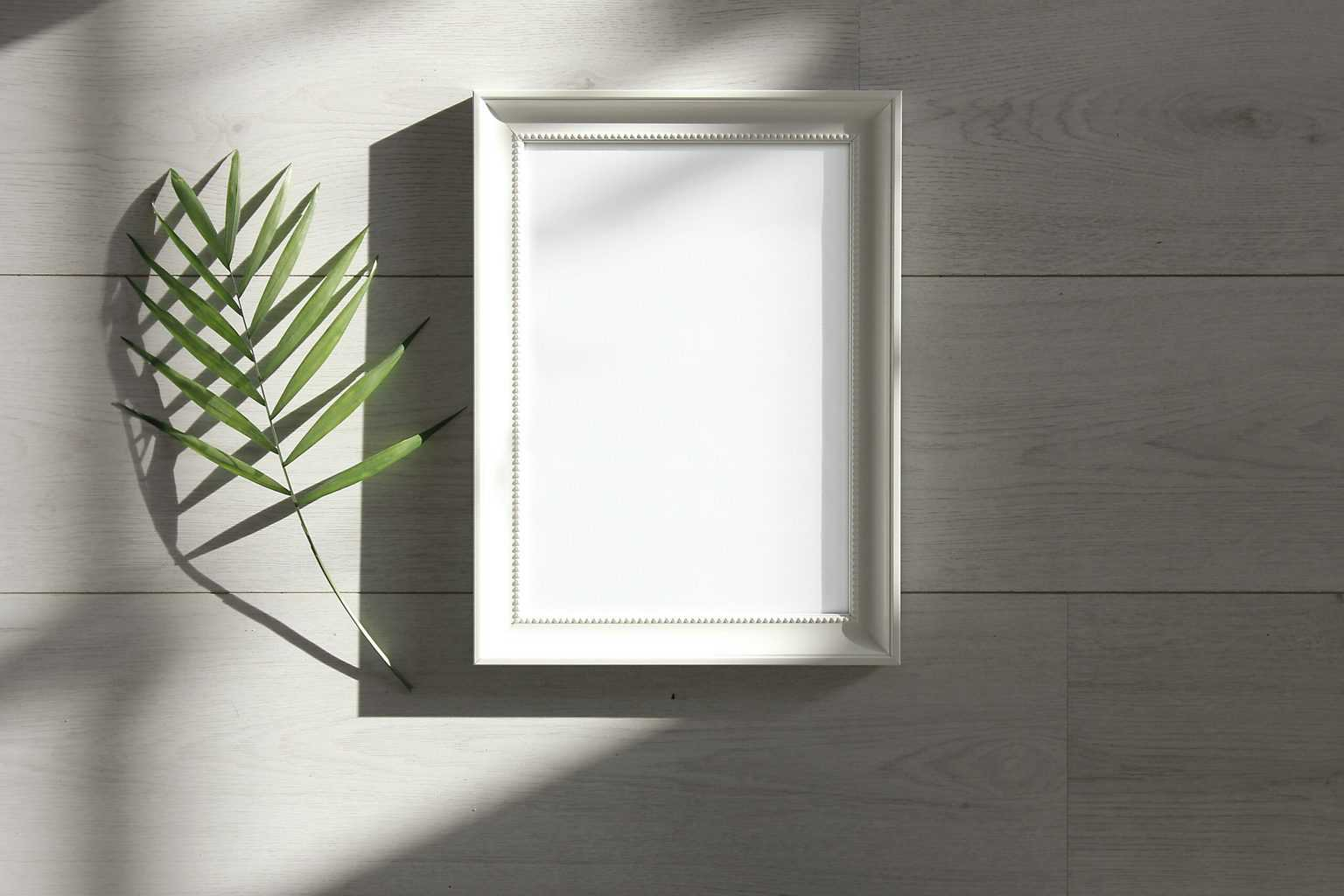 A white poster frame with sunlight and a plant branch